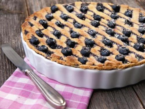 Как сделать из черники начинку для пирожков. Пироги с черникой — 7 простых рецептов черничной выпечки