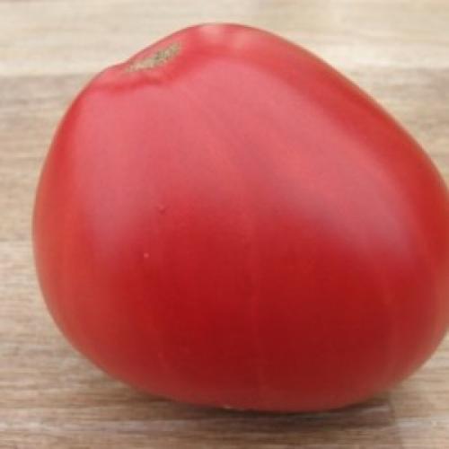 Томат Любящее сердце характеристика и описание сорта. Характеристика и описание сорта томатов Любящее сердце красное