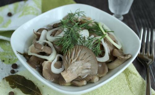 Малосольные грибы вешенки. Маринованные вешенки быстрого приготовления в домашних условиях
