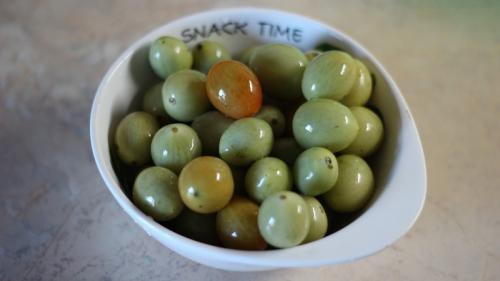 Как засолить зеленые помидоры не закатывая. Лучшие методы засолки зеленых помидоров в ведре холодным способом