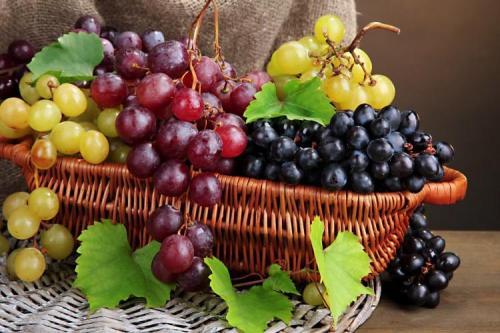 Сорт винограда на а. Лучшие сорта винограда: фото, названия и описания (каталог)